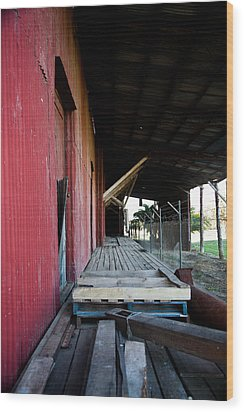 The Red Shed Wood Print by Carole Hinding