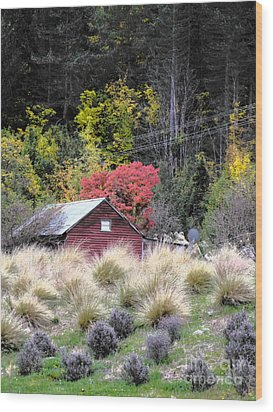 The Red Shed Wood Print by Karen Lewis