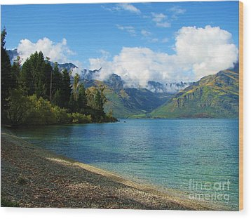 Wood Print featuring the photograph The Remarkables by Michele Penner