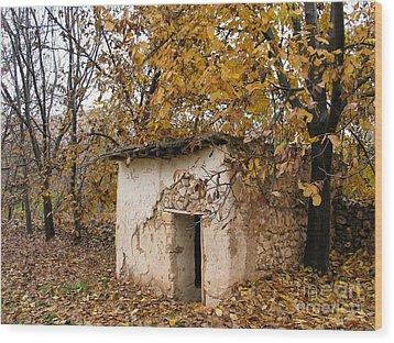 The Remote Autumn Hut Wood Print by Issam Hajjar