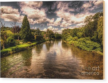 The River Exe At Bickleigh Wood Print by Rob Hawkins