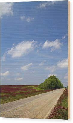The Road Ahead Is Lined In Red Wood Print by Kathy Clark