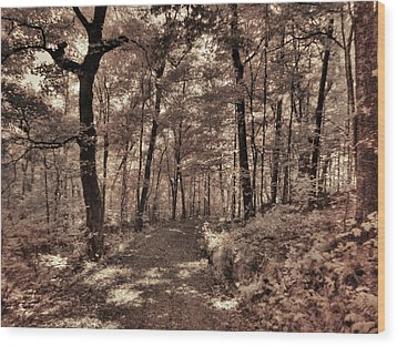 Wood Print featuring the photograph The Road Not Taken by William Fields