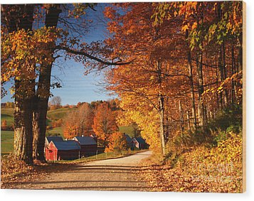 The Road To The Jenne Farm Wood Print by Butch Lombardi