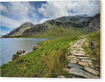 The Rocky Path Wood Print by Adrian Evans
