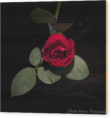 The Rose Wood Print by Charles Warren