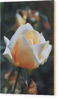 Wood Print featuring the photograph The Rose by Fotosas Photography