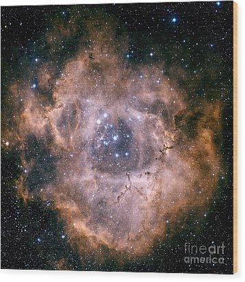 The Rosette Nebula Wood Print by Charles Shahar