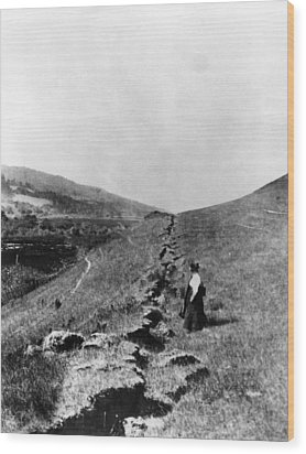 The San Andreas Fault In Olema Wood Print by Everett