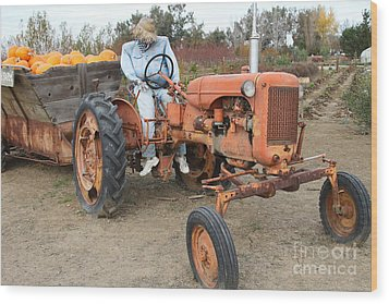 The Scarecrow Riding On The Old Farm Tractor . 7d10300 Wood Print by Wingsdomain Art and Photography