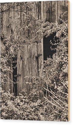 The Secret Door Wood Print by JC Findley