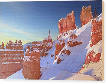 The Sentinal Bryce Canyon Wood Print by (C) Rob Little