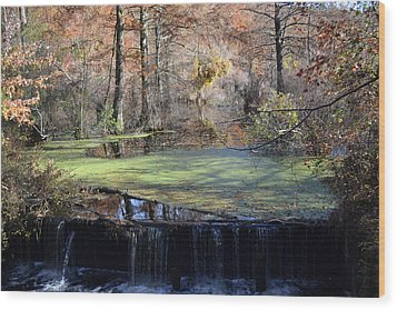 Wood Print featuring the photograph The Side Of The Road by Kelly Reber