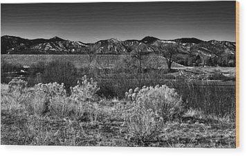 The South Platte Park Landscape II Wood Print by David Patterson