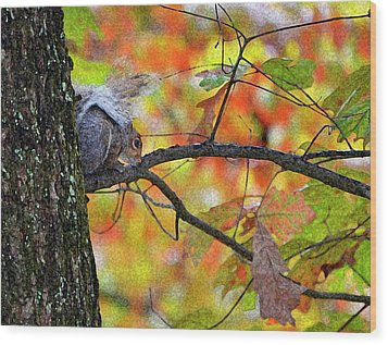 Wood Print featuring the photograph The Squirrel Umbrella by Paul Mashburn