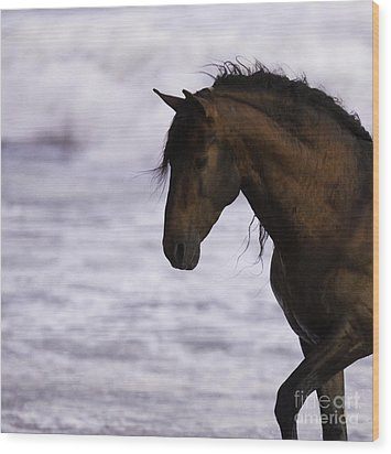 The Stallion And The Ocean Wood Print by Carol Walker