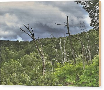 Wood Print featuring the photograph The Storm by Raymond Earley