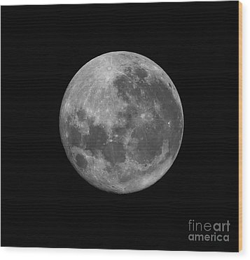 The Supermoon Of March 19, 2011 Wood Print by Phillip Jones
