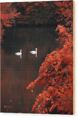 The Swan Pair Wood Print by Bill Cannon