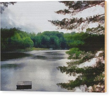 The Swimming Dock Wood Print by Michelle Calkins