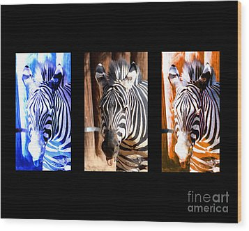Wood Print featuring the photograph The Three Zebras Black Borders by Rebecca Margraf