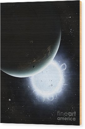 The Tiny Moon Rakka Ume Travels Wood Print by Brian Christensen