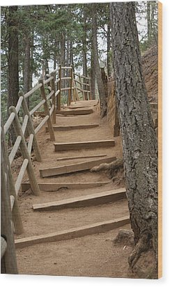 The Trail To The Top Wood Print by Ernie Echols