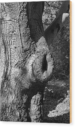 The Trunk Wood Print