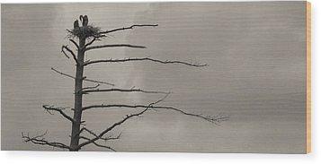 The Vulture Tree Wood Print by Artist Orange