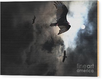 The Vultures Have Gathered In My Dreams . Version 2 Wood Print by Wingsdomain Art and Photography