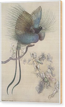 The Water Babies The Most Beuatiful Bird Of Paradise Wood Print by Warwick Goble