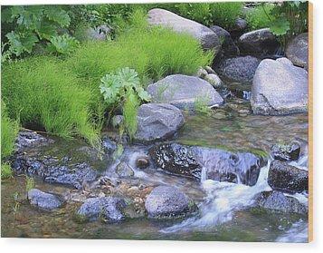 The Waterfall Wood Print by Nance Eakins