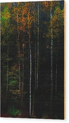 The Way To Glow From The Darkness Wood Print by Jenny Rainbow
