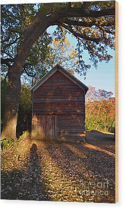 The Weathered Shed Wood Print by Sue Stefanowicz