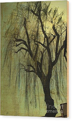 The Willow Tree Wood Print by Susanne Van Hulst