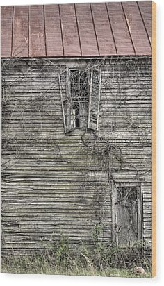 The Window Up Above Wood Print by JC Findley