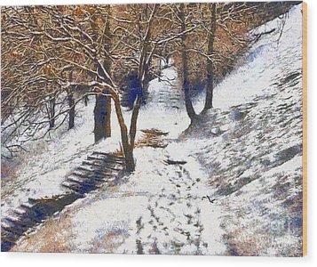 The Winter Park Wood Print