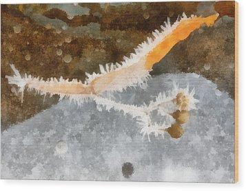 The Winter Still Life Wood Print by Odon Czintos