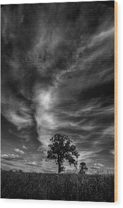 Wood Print featuring the photograph There Can Only Be One by John Chivers
