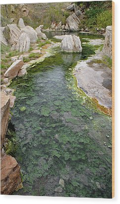 Wood Print featuring the photograph Thermopolis Hot Springs by Geraldine Alexander