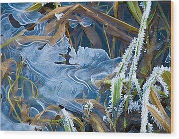 Thin Ice Wood Print by Rob Hemphill