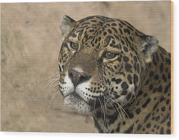 Wood Print featuring the photograph Thinking by Cheri McEachin