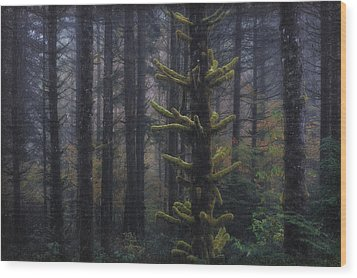 This Is British Columbia No.54 - Misty Mystical Moss Forest II Wood Print by Paul W Sharpe Aka Wizard of Wonders