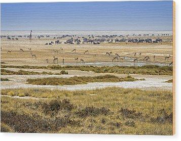 This Is Namibia No.  1 - Waterhole At Etosha Pan Wood Print by Paul W Sharpe Aka Wizard of Wonders