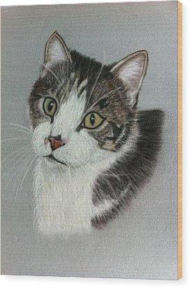 Thomas A Pastel Portrait Wood Print by Hillary Rose