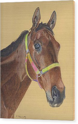 Thoroughbred Wood Print by Patricia Barmatz