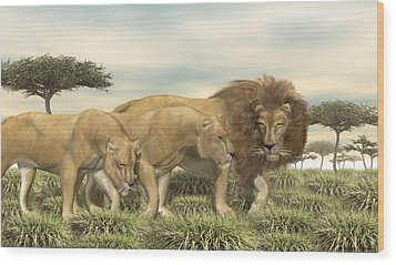 Wood Print featuring the digital art Three African Lions by Walter Colvin