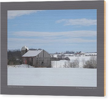 Wood Print featuring the photograph Three Farms In Winter by Patricia Overmoyer