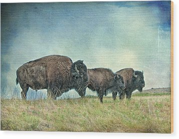 Three In A Row Wood Print by Tamyra Ayles