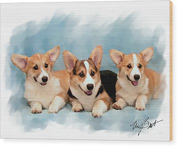 Three Musketeers Corgis Wood Print by Maxine Bochnia